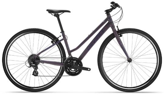 Devinci Altus Stepthru Bike